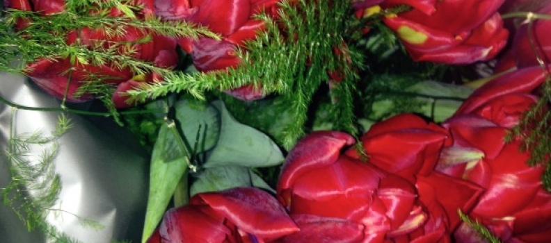 Nieuw: Reserveer de eiken familietafel in Bistro La Bionda